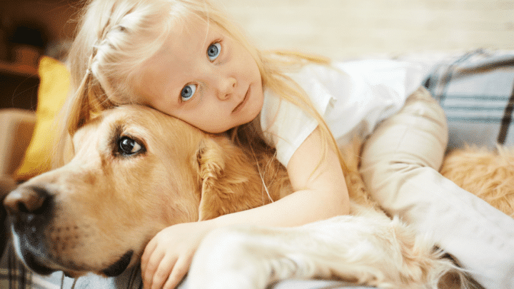 How to Get Your Dog to Cuddle with You – NICE!