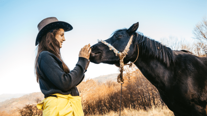 How to Tell if a Horse Likes You? — True Signs of Affection!