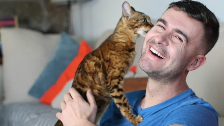 Why Do Cats Bite Your Face? Stop It!